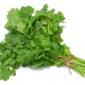 coriander herb delivery Greenock